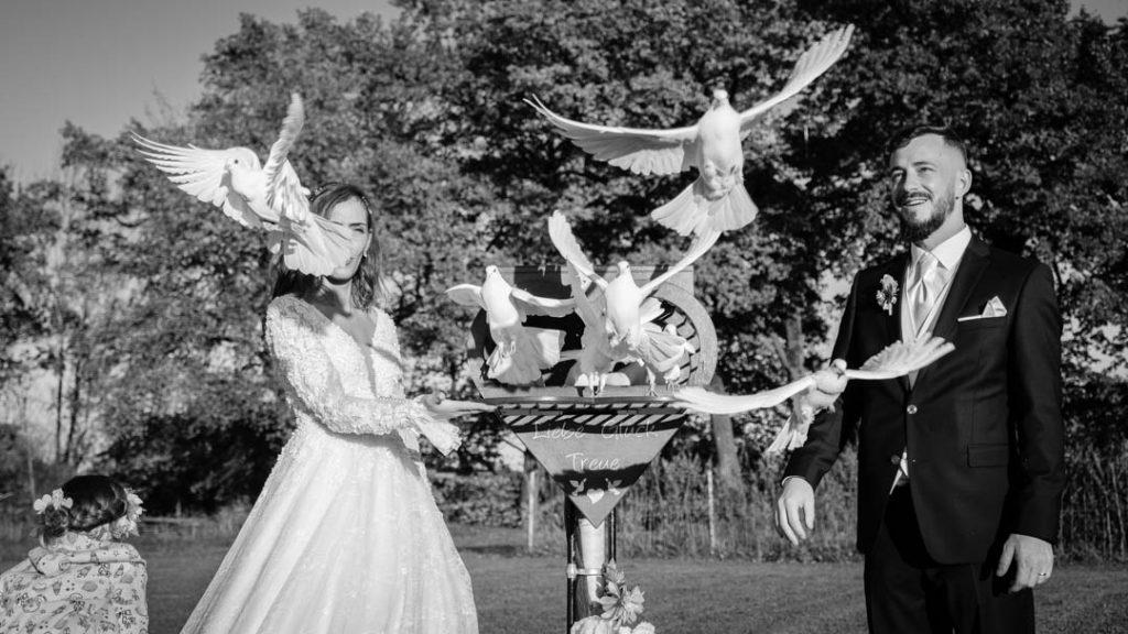 Hochzeitstauben ein Symbol