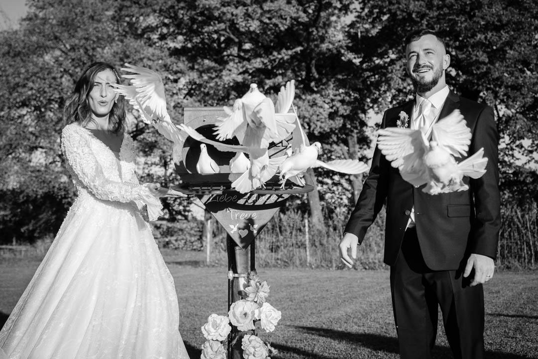 Hochzeitstauben aus München
