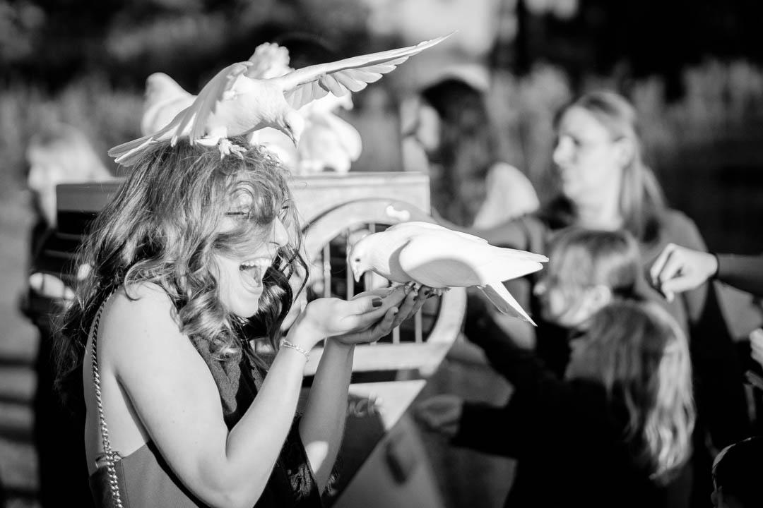 weiße Tauben in München