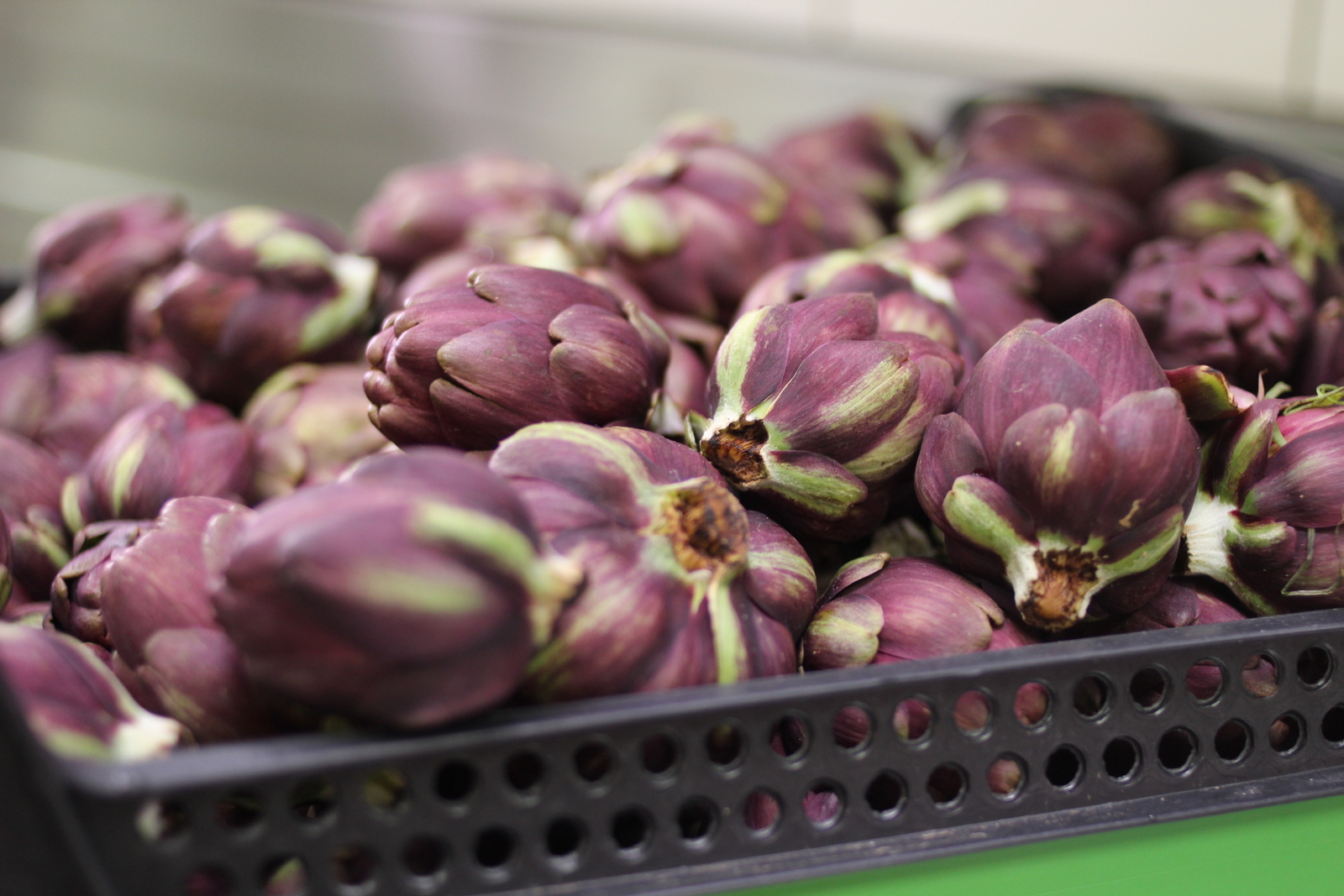 frisches Gemüse im Biocatering